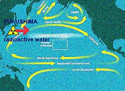 fukushima-marine-currents