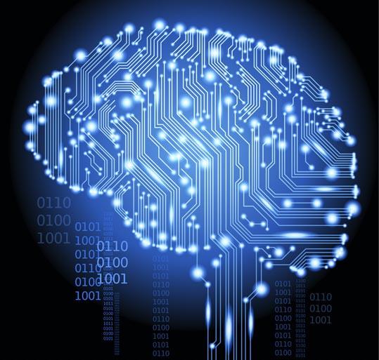 data-brain_SM